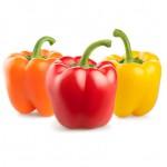 fresh pepper vegetables isolated on white background