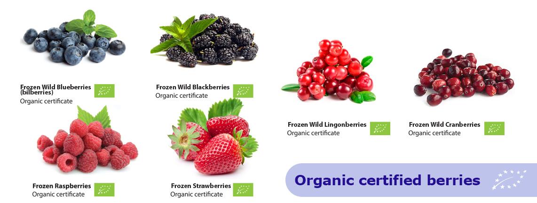 Banner_Organic_certified_v2